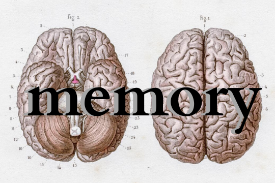 know your brain and enhance your memory